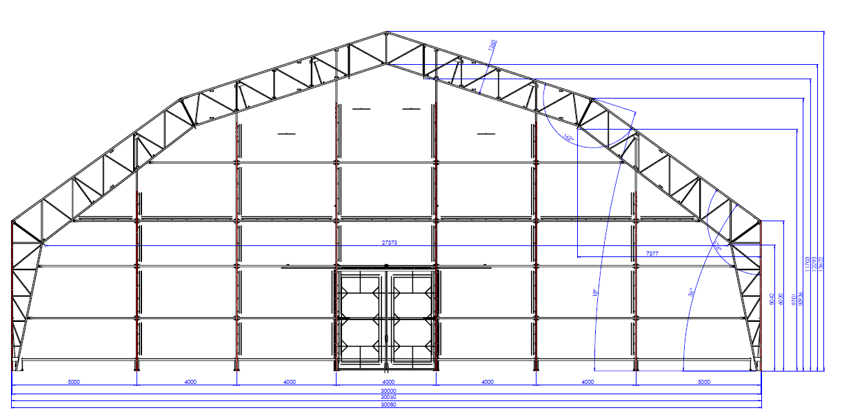 Multi-hip roof steel hall